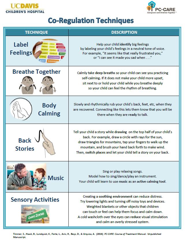 Coregulation Skills for Caregivers